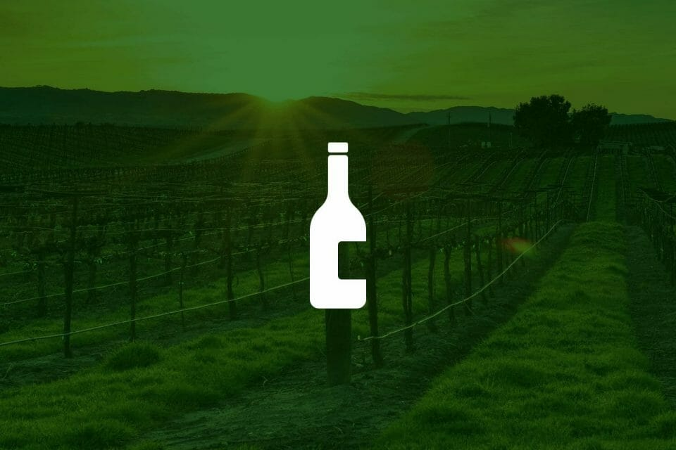 Top 6 Distillers & Wineries Stock to Buy in 2019
