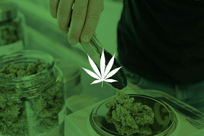 One Year of Cannabis Investing: Happy Birthday, Mary Jane!