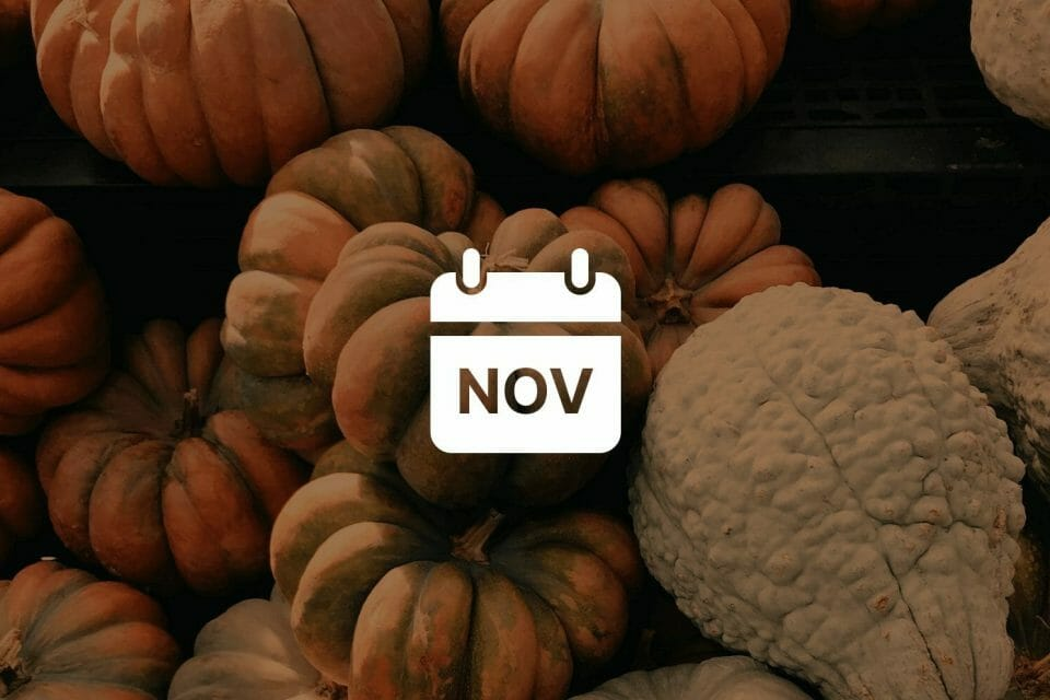 November's Early Season's Greetings: Best Stocks Ideas