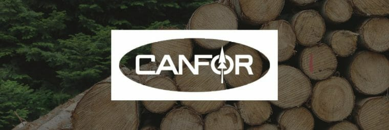 CFP Stock: Canfor width=